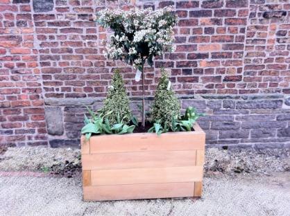 Planter4