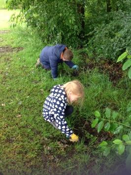 buckshaw wildflower planting 7