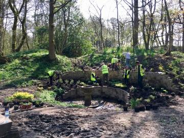 Planting out - April 2018
