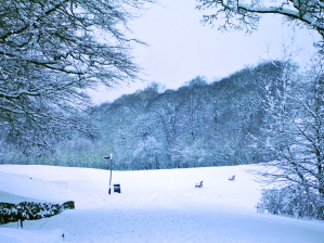 Heavy snowfall in Astley Park - December 2010